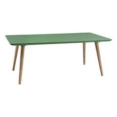 Carsyn Rectangular Coffee Table - Pickle Green - Image 1